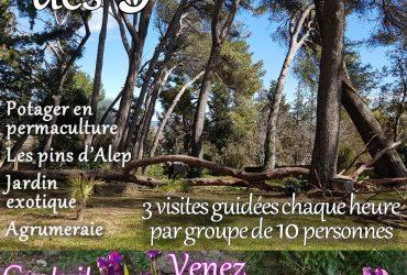 Visite des Jardins, dimanche 14 juin 2020